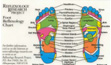 reflexology button chart